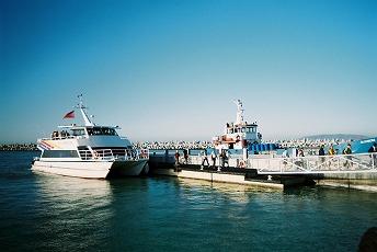 ロベン島の画像 p1_21
